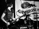 The Ramonas - Le Gambrinus - Liège